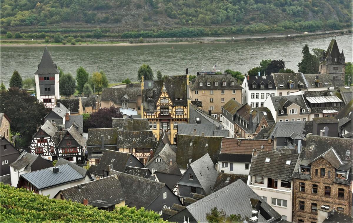 Zdjęcia: Bacharach, Dolina Renu, Bacharach, widok na miasto z winnic., NIEMCY