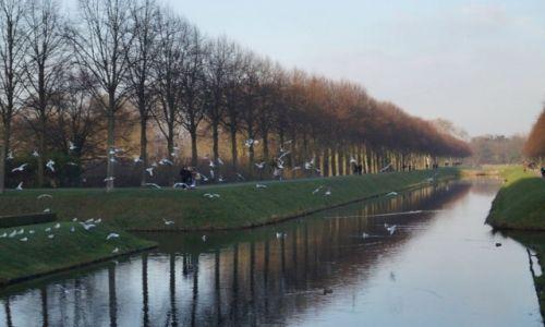 Zdjecie NIEMCY /  Noordrhien-Westfalen / Kleve / Konkurs Tam Wroce