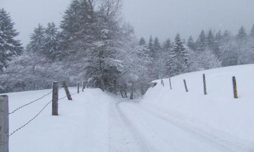 Zdjecie NIEMCY / Bawaria / Bolsterlang / Bawarska zima