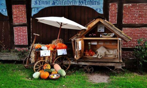 Zdjecie NIEMCY / Hannover / Hannover / Kleine Geschaft