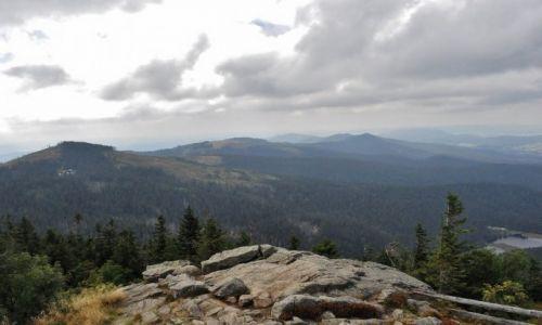 Zdjecie NIEMCY / Bawaria / Grosser Arber, 1 456 m / Las Bawarski