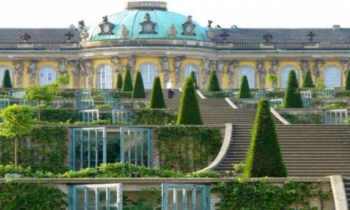 Zdjęcie NIEMCY / Brandenburgia / Poczdam / Tarasy z winoroślami i figami.