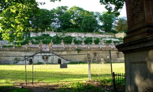 Zdjęcie NIEMCY / Brandenburgia / Poczdam / Zabytkowa winnica , z rzymskim akcentem