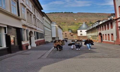 Zdjęcie NIEMCY /  Badenia-Wirtembergia / Heidelberg / Heidelberg, widoki