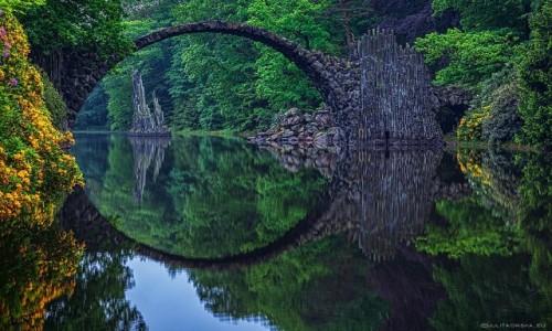Zdjecie NIEMCY /  Rhododendronpark Kromlau  /  Rhododendronpark Kromlau  /  Rhododendronpark Kromlau