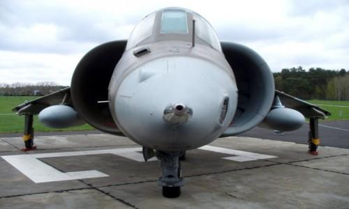 Zdjecie NIEMCY / Berlin / Berlin / Harrier, mozliw