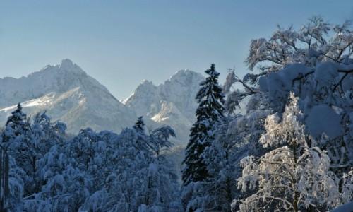 NIEMCY / Bawaria / Bawaria / Zima w Bawarii