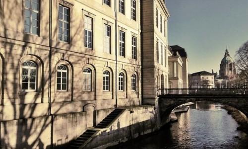 Zdjęcie NIEMCY / Dolna Saksonia / Hanower / Zamiast bluszczu...