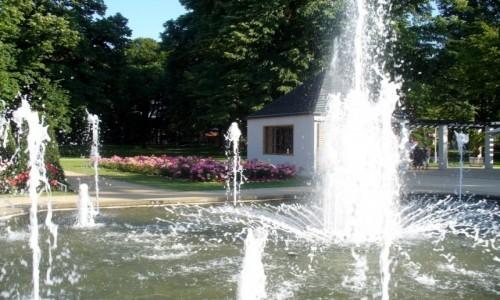 Zdjęcie NIEMCY / Nederlausic / Forst / Fontanny w ogrodzie rózanym