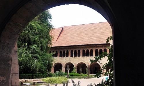 Zdjecie NIEMCY / Dolna Saksonia / Hildesheim / Na różanym krzewie
