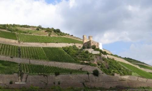 Zdjęcie NIEMCY / Hessen / Rüdesheim am Rhein / Kraina winem płynąca
