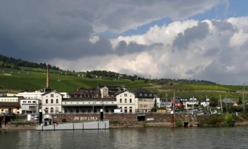 Zdjęcie NIEMCY / Hessen / Rüdesheim am Rhein / W dolinie Renu II