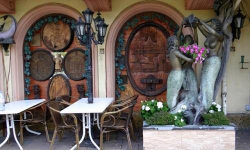 Zdjęcie NIEMCY / Hessen / Rüdesheim am Rhein / In vino veritas