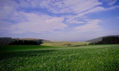 NIEMCY / Westfalia / Sauerland / - jeszcze zielono -