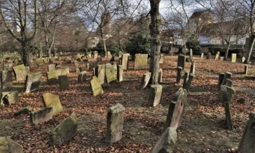 Zdjęcie NIEMCY / Nadrenia-Palatynat / Worms / Worms, cmentarz żydowski z 1077 r.