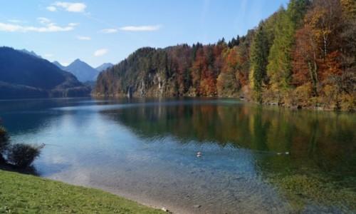 NIEMCY / Bawaria / Jezioro Alpsee / Sielanka