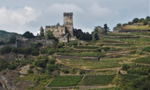 Zdjecie NIEMCY / Dolina Renu / Kaub / Kaub, zamek na górze i winnice