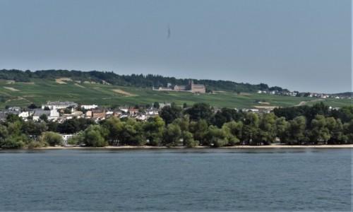 Zdjecie NIEMCY / Dolina Renu / Rudesheim am Rhein / Rudesheim am Rhein