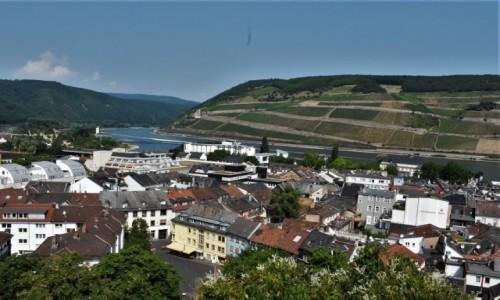 Zdjęcie NIEMCY / Dolina Renu / Bingen am Rhein / Bingen am Rhein, dolina RENU
