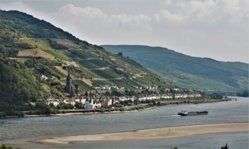 Zdjęcie NIEMCY / Dolina Renu / Lorch / Lorch