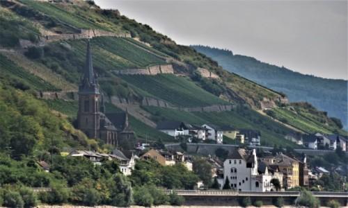 Zdjecie NIEMCY / Dolina Renu / Lorch / Lorch