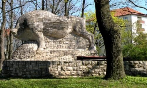 Zdjecie NIEMCY / Berlin / park / Byk parkowy