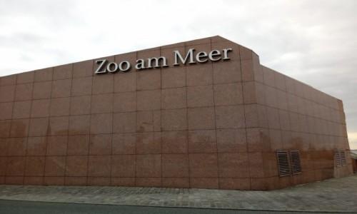 Zdjecie NIEMCY / Brema / Bremerhaven / Bremerhaven. Zoo nad morzem