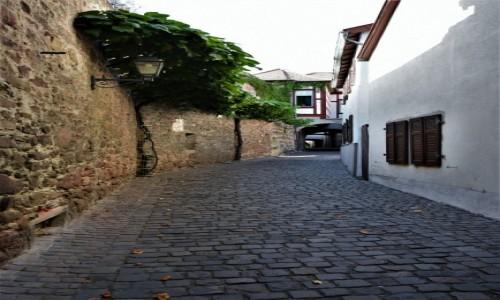 Zdjęcie NIEMCY / Rein Pfalz / Freinsheim / Freinsheim, szlak murów miejskich
