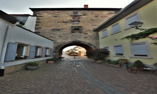 Zdjecie NIEMCY / Rein Pfalz / Freinsheim / Freinsheim, brama miejska