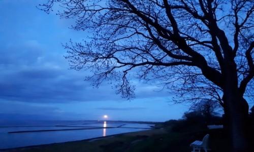 Zdjecie NIEMCY / Morze Północne / Wyspa Sylt / Wieczór na Sylcie