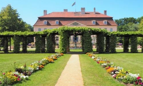 Zdjecie NIEMCY / Brandenburgia / Pałac księcia Pücklera,  Branitz / pleasure ground...