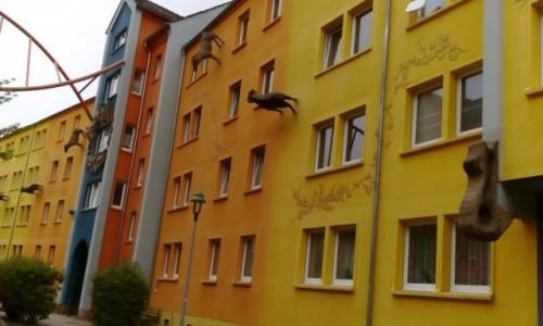 Zdjecie NIEMCY / Góry Żytawskie / Źytawa / Dzielnica Pop-Art w Żytawie