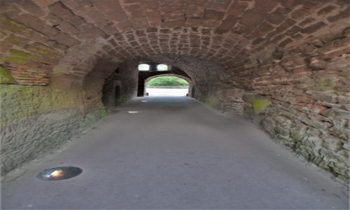 Zdjecie NIEMCY / Nadrenia Pallatynat / Hardenburg / Hardenburg, zamek