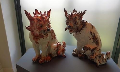 NIEMCY / Saksonia / Drezno / Zwinger - kolekcja porcelany miśnieńskiej