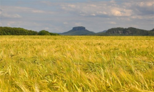 NIEMCY / Saksonia / Hohnstein / Saksoński krajobraz
