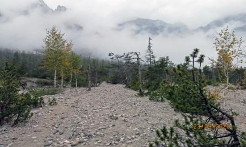 Zdjecie NIEMCY / Watzmann / Dolina bez wody / Alpy Bawarskie