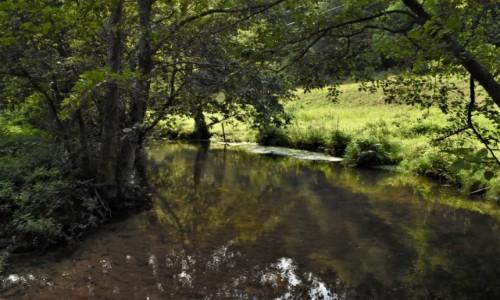 Zdjecie NIEMCY / Nadrenia Pallatynat / Lambrecht / Lambrecht, rzeka