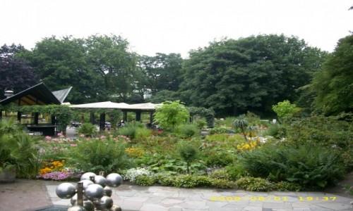 Zdjecie NIEMCY / Hamburg / Planten & Blumen / Niemieckie parki