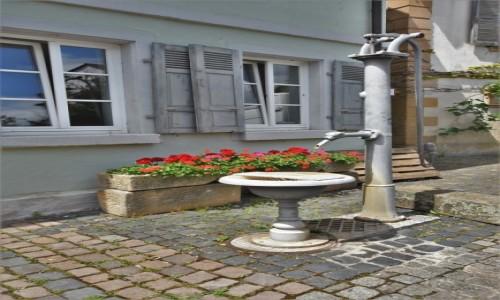 NIEMCY / Nadrenia-Palatynat / Forst an der Weinstrasse / Forst an der Weinstrasse, zakamarki