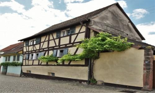 NIEMCY / Nadrenia Palatynat / Forst an der Weinstrasse / Forst an der Weinstrasse, zakamarki
