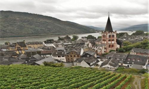 Zdjecie NIEMCY / Dolina Renu / Bacharach / Bacharach, widok na miasto z winnic.