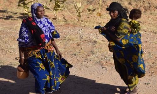 Zdjęcie NIGER / Niger południowy / Dosso / Jak kolorowe motyle