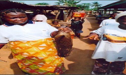 Zdjęcie NIGERIA / brak / Okolice Lagos / Bush-meat