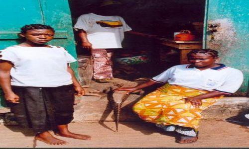NIGERIA / brak / Okolice Lagos / Targ - krokodyl na obiadek.