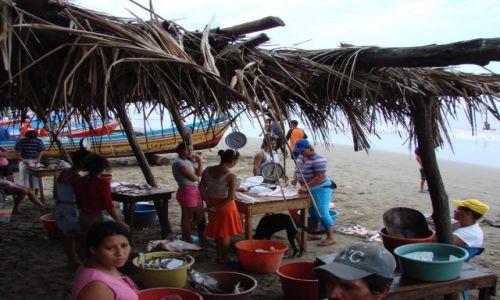 Zdjęcie NIKARAGUA / Nad od Oceanem / Nad Oceanem / Rybia uczta