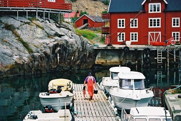 Zdjęcia: miejscowosc A, Lofoty, Rybak z rybka, NORWEGIA