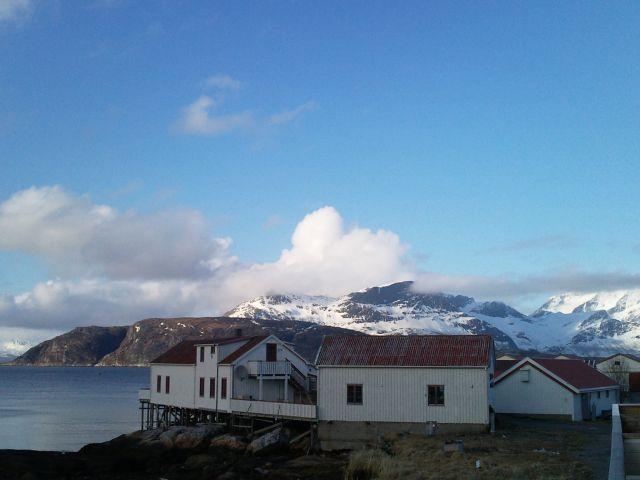 Zdjęcia: Bodo, Bodo, wyspa, NORWEGIA
