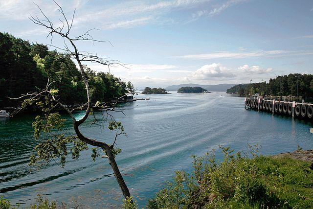Zdjęcia: Halhjem, Widok na fjord., NORWEGIA