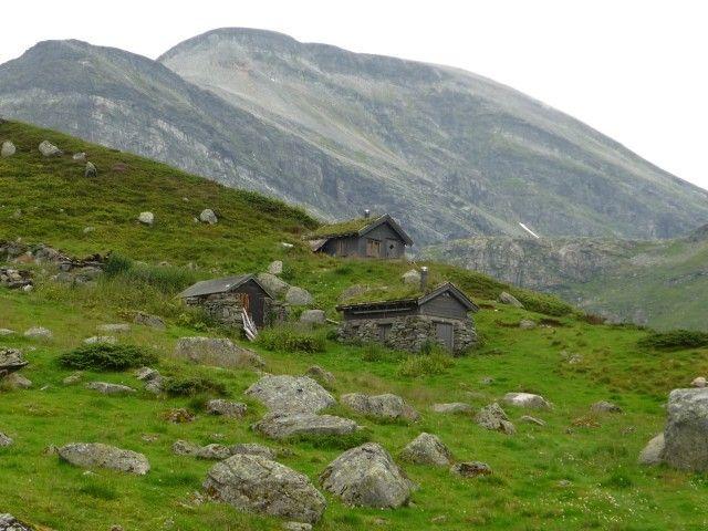 Zdjęcia: okolice Geirangerfjord, kamuflaż, NORWEGIA
