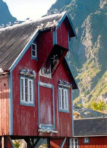 Zdjęcia: Lofoty, A na Lofotach, NORWEGIA